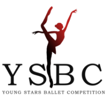 cropped-logo-ysbc1.png